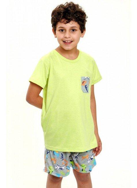 pijama de dinossauros coloridos infantil masculino curto 2